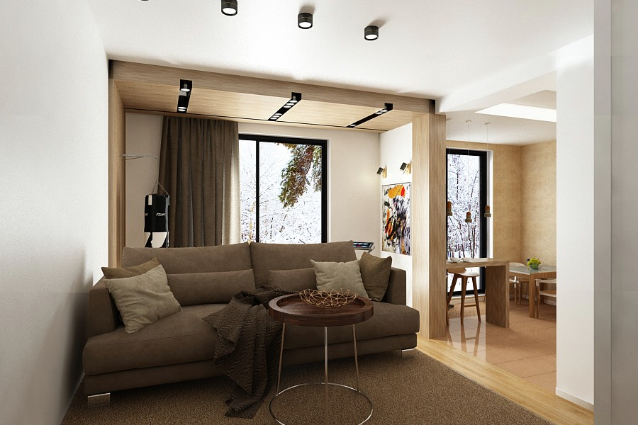 Design interior living - casa - in - brasov - 2017.
